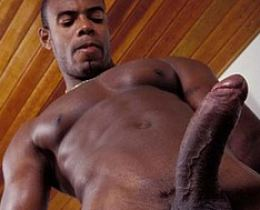 dorable blck gays display their big cocks
