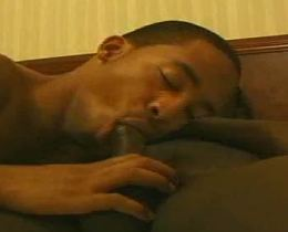 Horny black men sweet blowjob affair